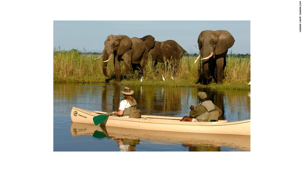 Boasting superb wildlife watching, some of the best white-water rafting on the planet and the thundering beauty of Victoria Falls, the Zambezi is a showstopper. In the Middle Zambezi, which borders Zambia and Zimbabwe, you can bungee jump off Africa's largest waterfall, or tackle the grade IV rapids just below.