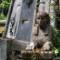London great cemeteries kensal green ducrow