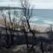 02 australia bushfire 1018