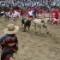 01 georgia bull run