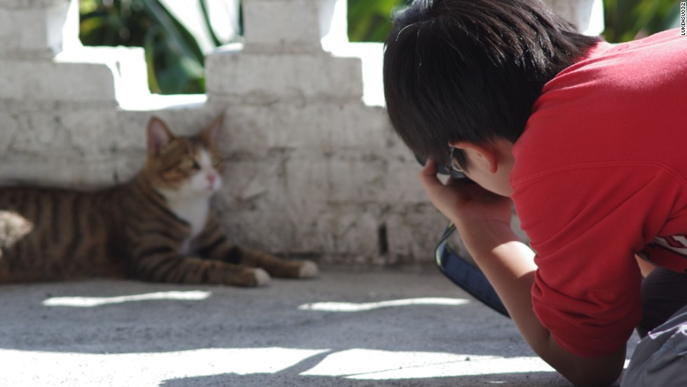 A reclaimed coal mine is meant to be Houtong's main attraction. The real lure is a 120-strong cat colony.