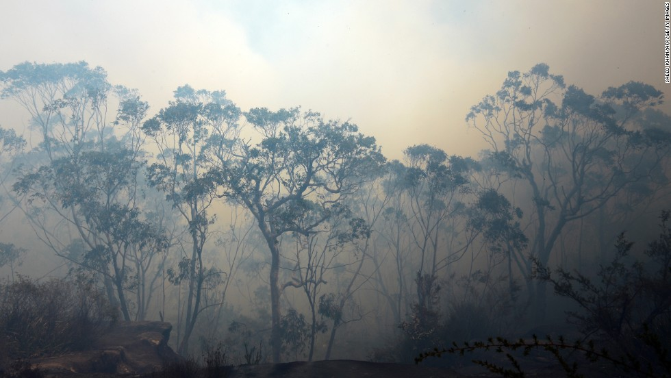 Thick smoke fills the sky near Faulconbridge on October 24.