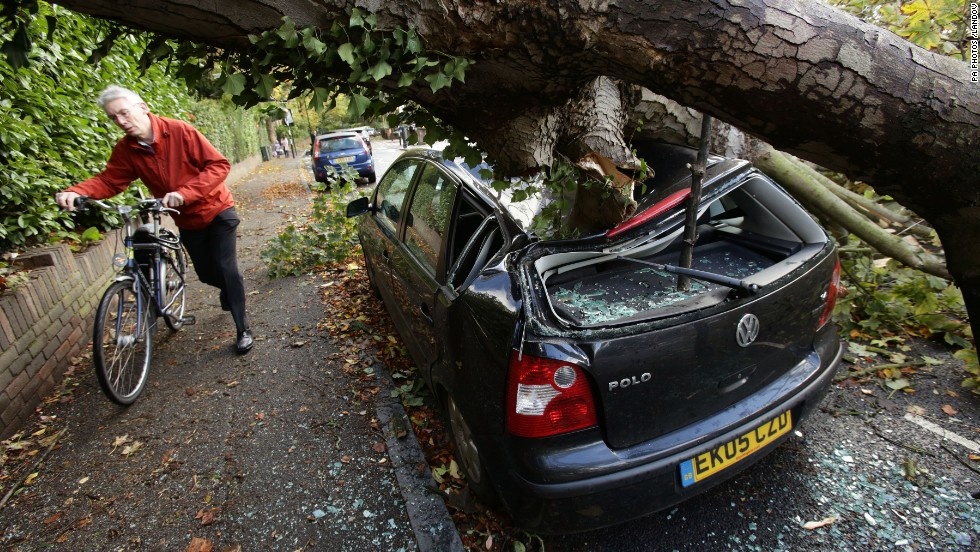 A car in London is crushed by a fallen tree on Monday. There have been several reports of people being killed by fallen trees.