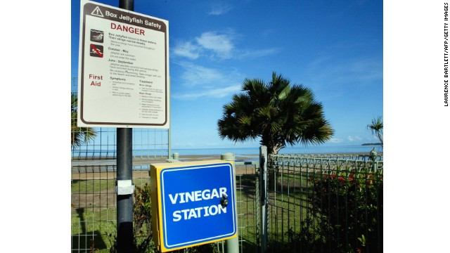 A sign warns against swimming in the sea due to the presence of deadly box jellyfish in Darwin, Australia. A 'Vinegar Station' offers a temporary remedy for those who have been stung.