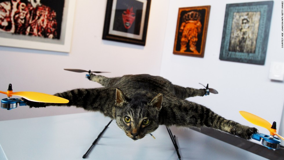 "Drone+stuffed cat = art. Orville is a flying helicopter cat made by Dutch artist <a href=""http://bartjansen.tv/"" target=""_blank"">Bert Jansen</a>. The remote-controlled quadcopter was first exhibited in Amsterdam and Jansen has since created more taxidermy drones."