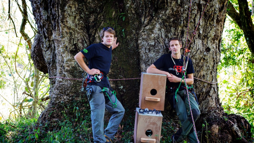 Wiles (left) and co-founder Drew Bristow also helped in installing nest boxes for the endangered Cape Parrot, an endemic species of which less than 1,000 are thought to be alive.