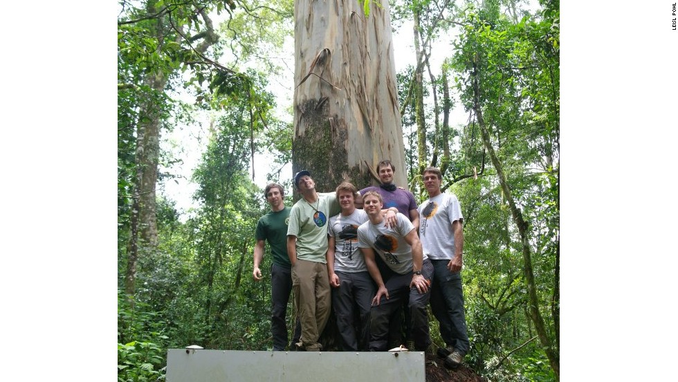 The group also scaled climbed for the first time what was measured to be the world's tallest planted tree: an 81.5-meter eucalyptus in Limpopo.