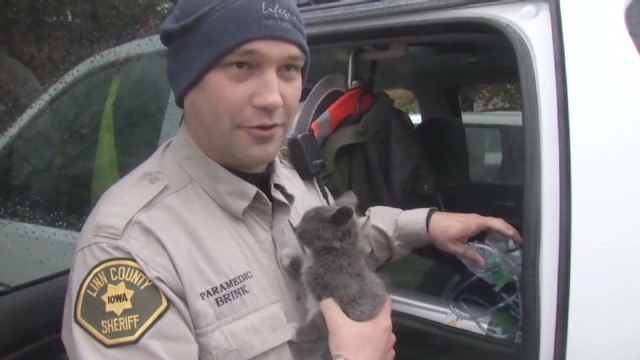 Deputy uses oxygen mask to save kitten