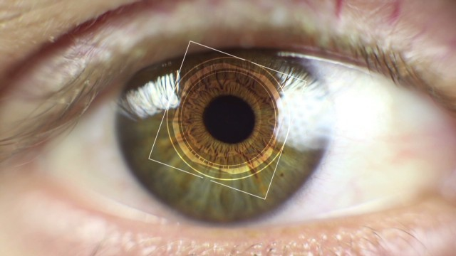 How iris recognition 'reads' your eyes