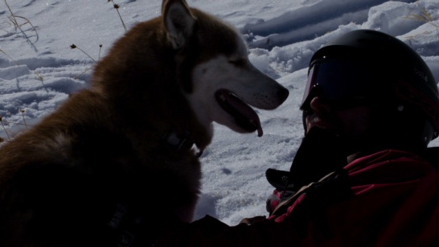 kdvr.dnt.dog.saves.skier_00004918.jpg