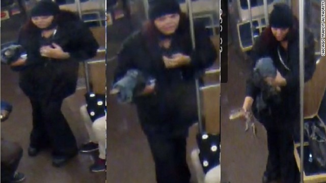 The Chicago Transit Authority released photos of a woman at O'Hare International Airport holding the alligator.