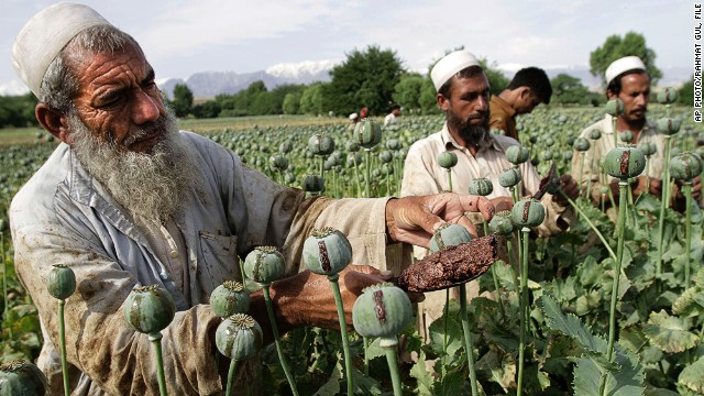 Afghan opium production hits new highs