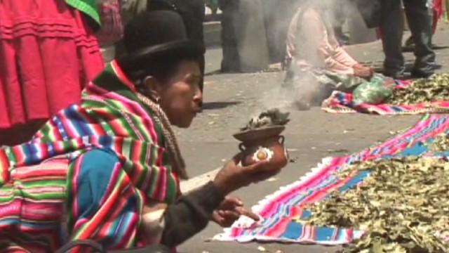 cnnee carrasco bolivia coca report_00010102.jpg