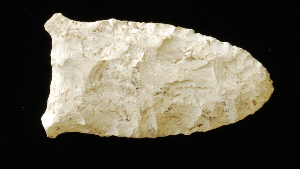 The oldest of the stone tools recovered was a Suwannee projectile point. Dating from the Paleo-Indian period (10,000 - 8,000 BC), Suwannee points are lanceolate in shape and measure between 7.5-12 cm on average. Although found across much of Florida, Suwannee points are most commonly found in the Ichetucknee and Santa Fe Rivers.