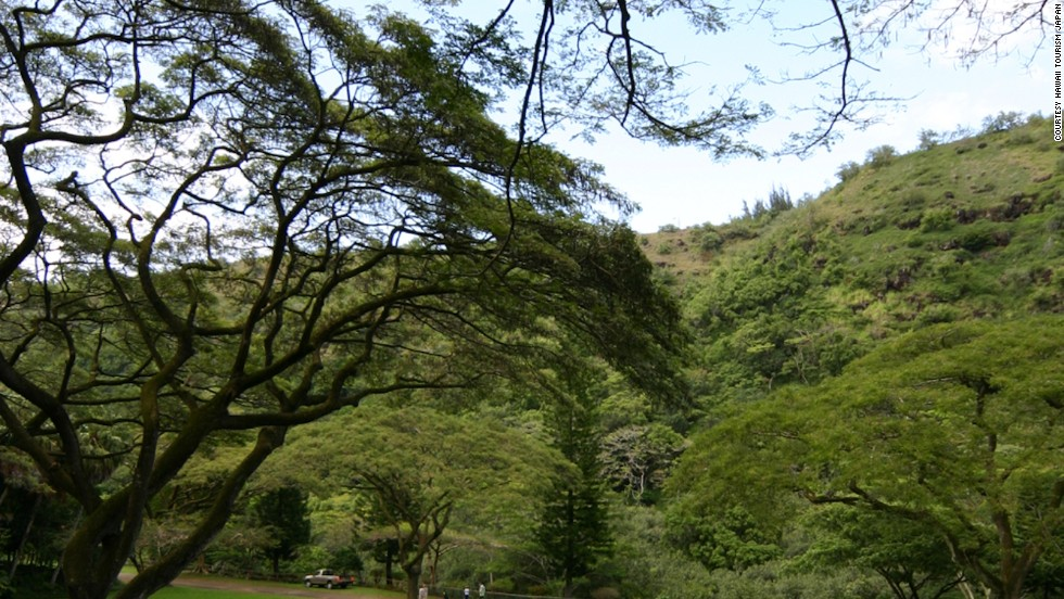 Although jungle scenes were filmed in remote locations in the North Shore's Waimea Valley that are off-limits to tourists, visitors can still explore tropical forests and other parts of the valley.