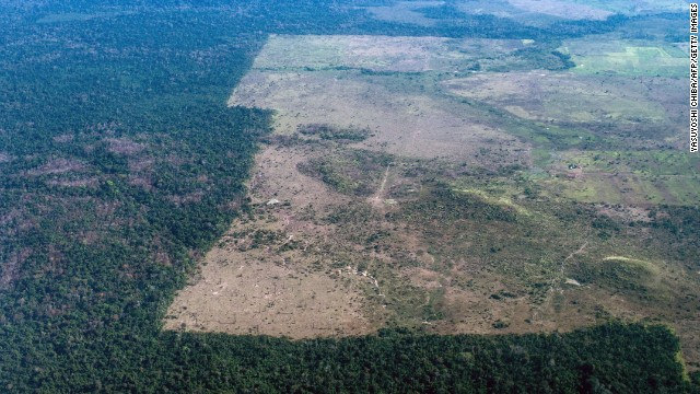 The area cleared of trees stops at the border of a reservation in northern Brazil.