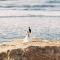 Dramatic Wedding Photos -Bryce Covey Photography