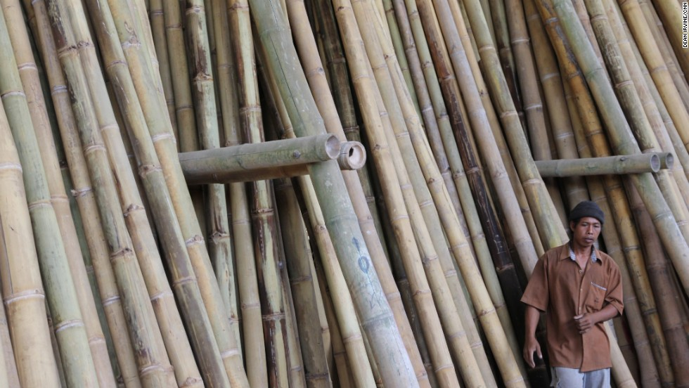 Around 200 farmers across Bali are paid to grow bamboo on areas of their land not used for agriculture. Some of the largest  logs are 25 meters long but only take 3 years to grow.