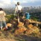 Joburg history-CBD Melville Koppies