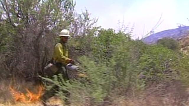 cnnee alvarado us cal fires supression camps_00013427.jpg
