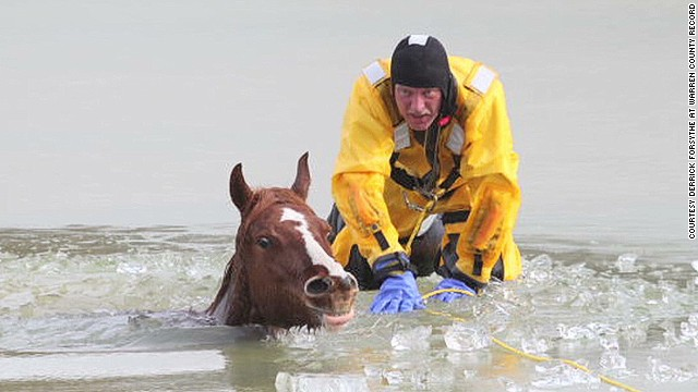 dnt mo horses ice rescue_00014126.jpg