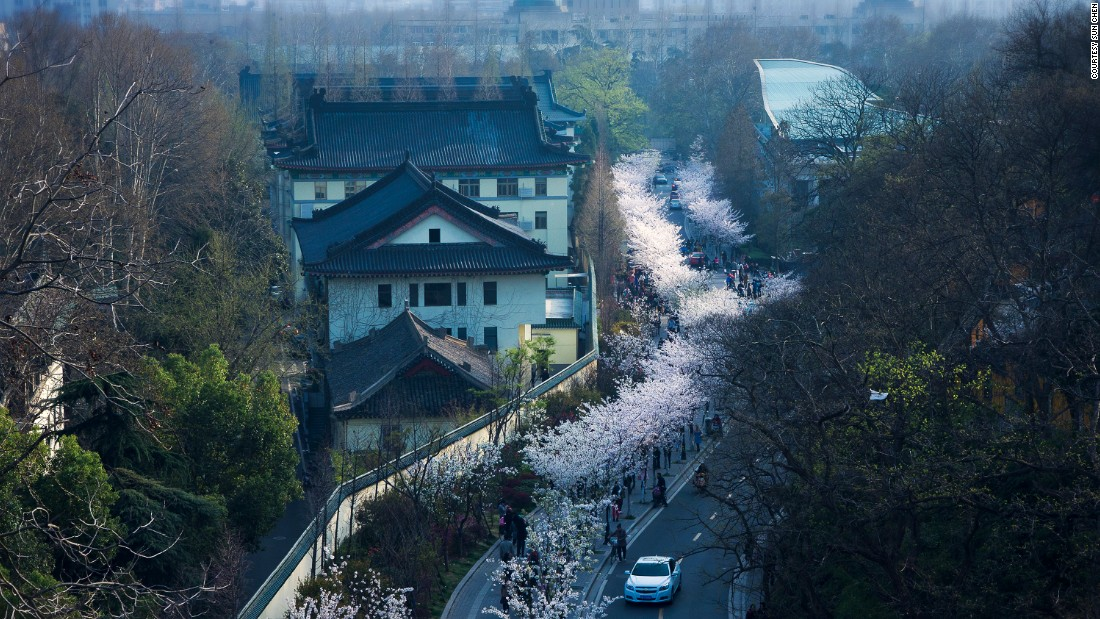 "Photographer Sun Chen, 50, has lived his entire life in <a href=""http://travel.cnn.com/nanjing"">Nanjing</a>. He began photographing the city a decade ago when parts of Nanjing became threatened by demolition. Jimingsi Road (pictured) outside Jiming Temple offers one of the best views of Nanjing, especially in spring.<br />""Cherry blossoms are at their fullest in March,"" says Sun. ""The blossoms along the Jimingsi Road usually last three to four days."""