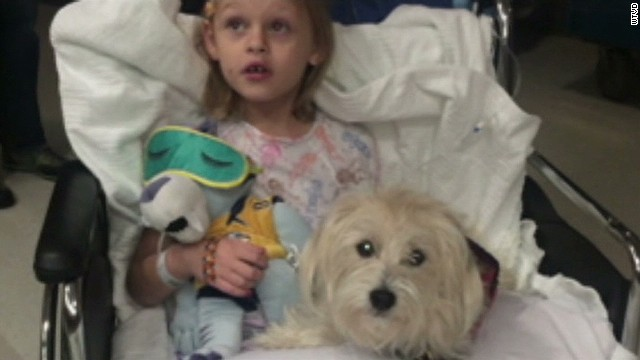 dnt dog with girl surgery_00011129.jpg