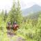 horse treks-Banff National Park, Alberta