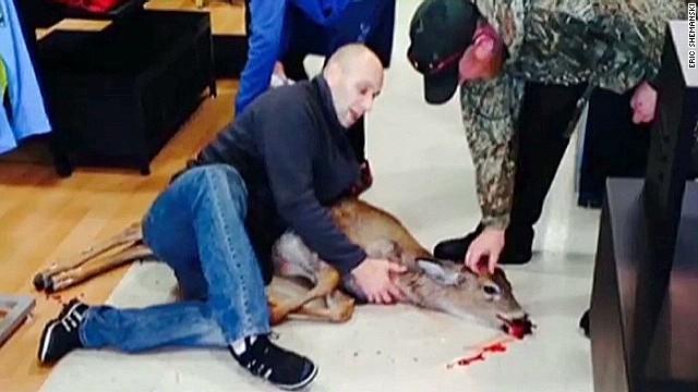 dnt pa deer sporting goods store_00011715.jpg