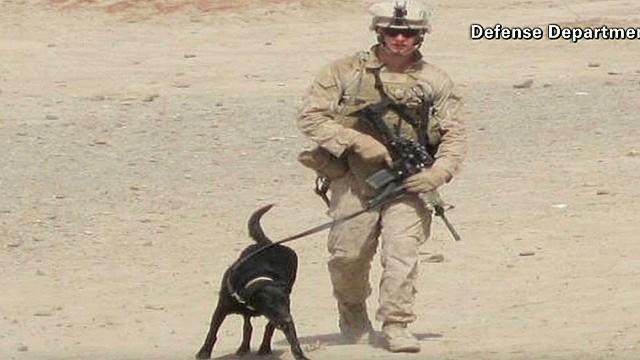 tsr dnt Starr Pentagon dog protects halls_00005322.jpg