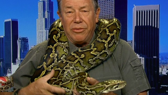 newday intv sylvester python death bali_00001630.jpg