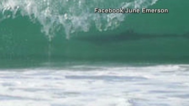 Is this real? Shark photobombs surfers