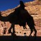 camel jordan