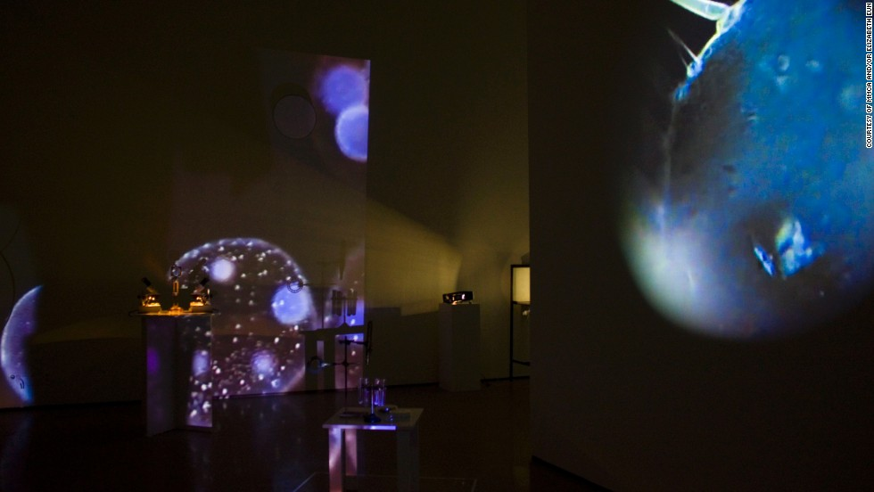 """The museum's most popular exhibition is The Aleph Project, a combination of science, art and architecture. """"The Elaboratorium"""" (pictured) is by the Scale Free Network, an Australian art-science collaborative."""