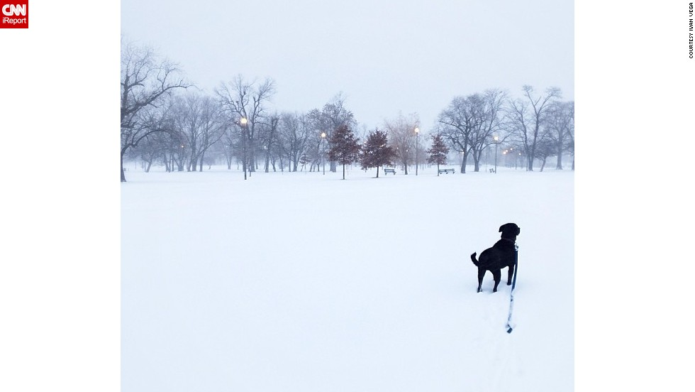 "Winter weather brought on a whiteout on January 2 in Chicago's Humboldt Park neighborhood, said<a href=""http://ireport.cnn.com/docs/DOC-1072304""> Ivan Vega</a>. He went out for a walk in the 20-degree weather with his dog, Sergeant Thomas."