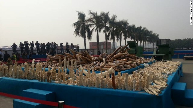 WWF: China serious about illegal ivory
