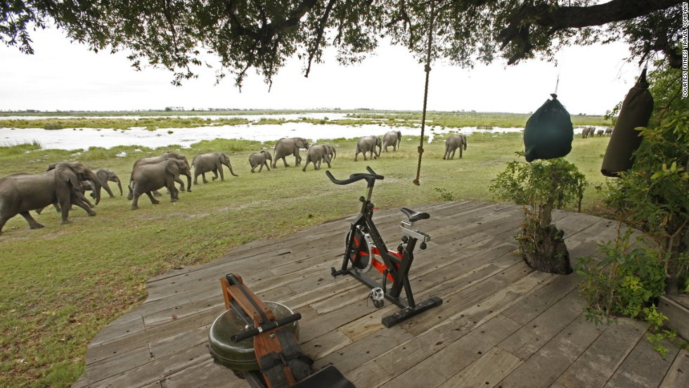 Fitness Travel Company's latest adventure in Senegal is an action-packed week full of beach runs, an 18-mile cycle to a lion cub game reserve, kayaking to a private beach and learning African dance to the sound of local drums.