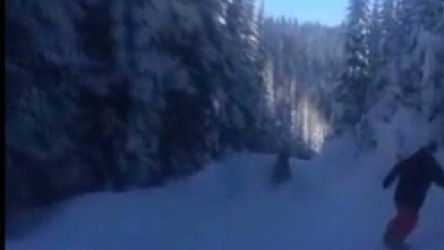 tsr moos snowboarders chase moose _00002927.jpg