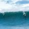 dorian surfing