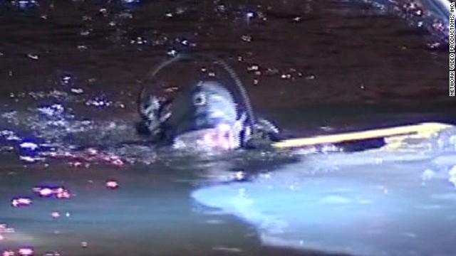 mxp chicago river rescue_00002802.jpg