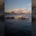 Hudson plane landing Krums