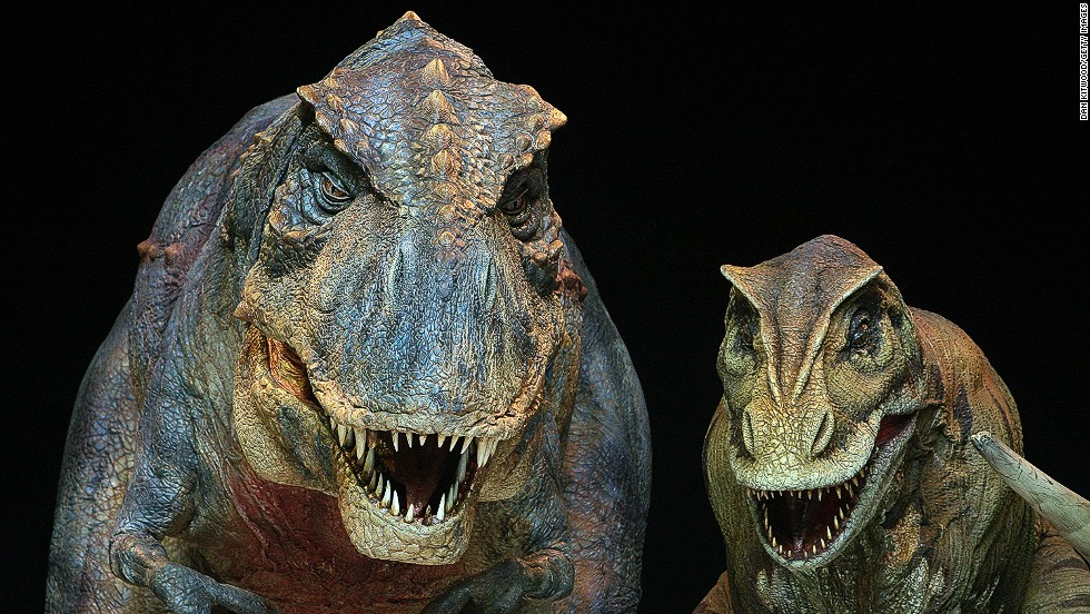 """An international team of scientists has discovered the first evidence of dinosaurs in Saudi Arabia. Dinosaur remnants are exceptionally rare in the Arabian Peninsula (enough """"to fit inside a shoe box"""" according to Benjamin Kear, the study's lead author)."""