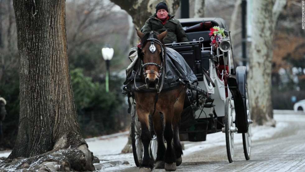 A horse pulls a carriage down a snow-dusted street in Central Park in January 2014.