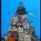 12 cat art show