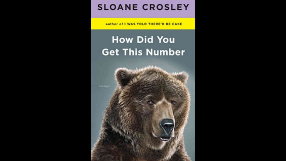"<a href=""http://www.amazon.com/How-Did-You-This-Number/dp/B005ZO5PD8/ref=pd_cp_b_0"" target=""_blank"">""How Did You Get This Number,""</a> by Sloane Crosley"
