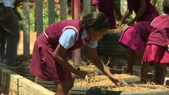 Can gardening promote education?