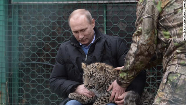 "First the bare-chested fishing, now the ""Sochi leopard"" pose."