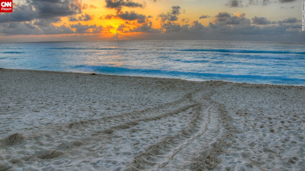 "<a href=""http://ireport.cnn.com/docs/DOC-1078686"">Matt Swinden</a> captured turtle tracks in the sand at sunrise on a Cancun beach."