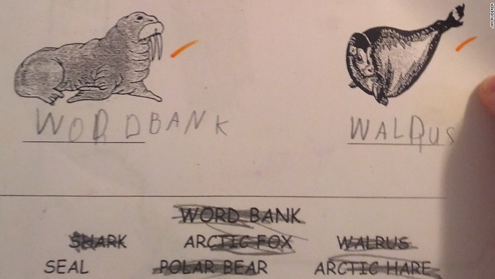 Apparently This Matters: I (was) the walrus - CNN.com