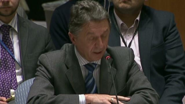 ukraine sergeyev un speech_00001320.jpg